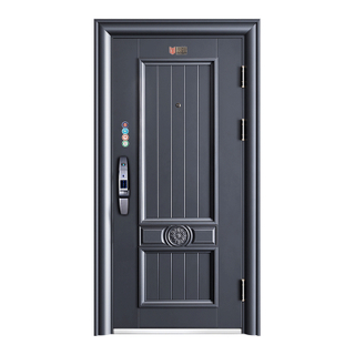 Modern New Design Steel Security Door